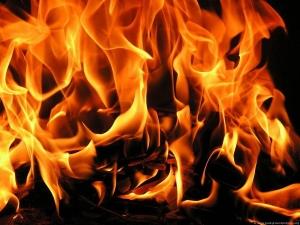 Пожар в Големо Бучино